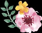 springの画像1